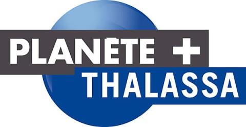 Planète Thalassa au p'tit bonheur la France
